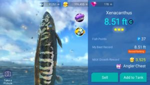 Fishing Strike Game