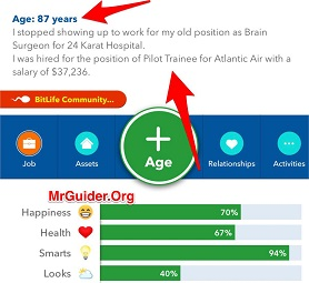 BitLife - Life Simulator Become Pilot And Airline Captain
