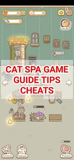 Cat Spa Game