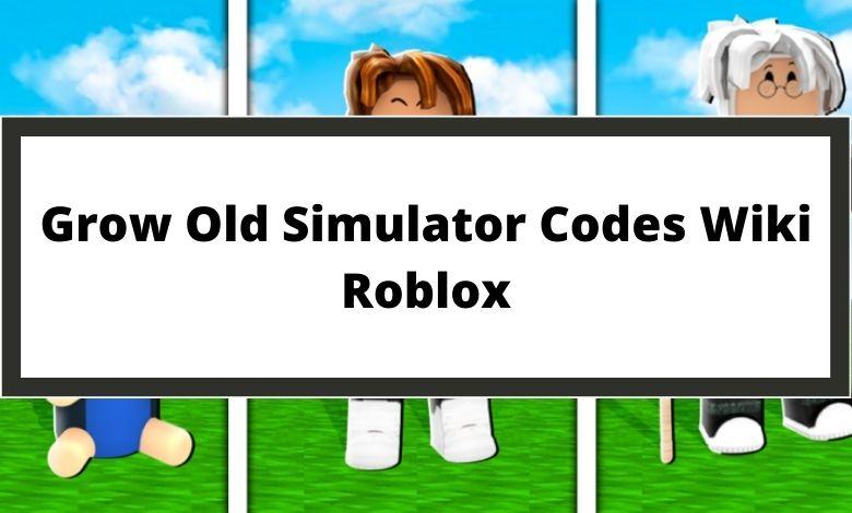 Grow Old Simulator Codes Wiki Roblox
