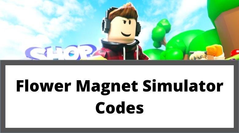 Flower Magnet Simulator Codes